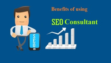 seo-consultant